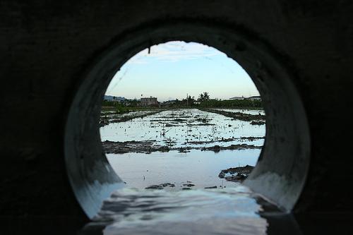 趴在排水孔前,可以看到圳水透過小圳路流進田裡的姿態!圖片提供:李慧宜