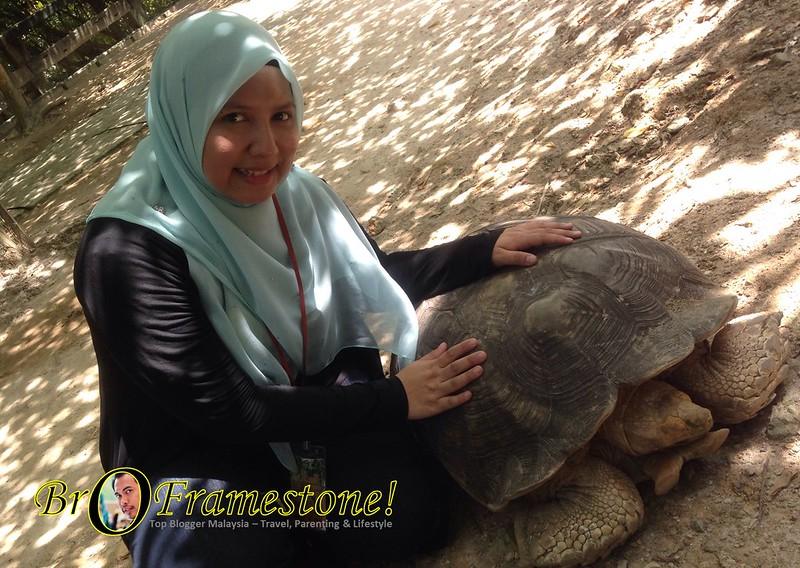 Kura-Kura di Farm in The City, Seri Kembangan - Kelab Blogger Ben Ashaari