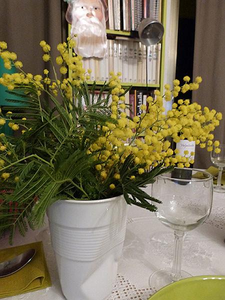 premier mimosa