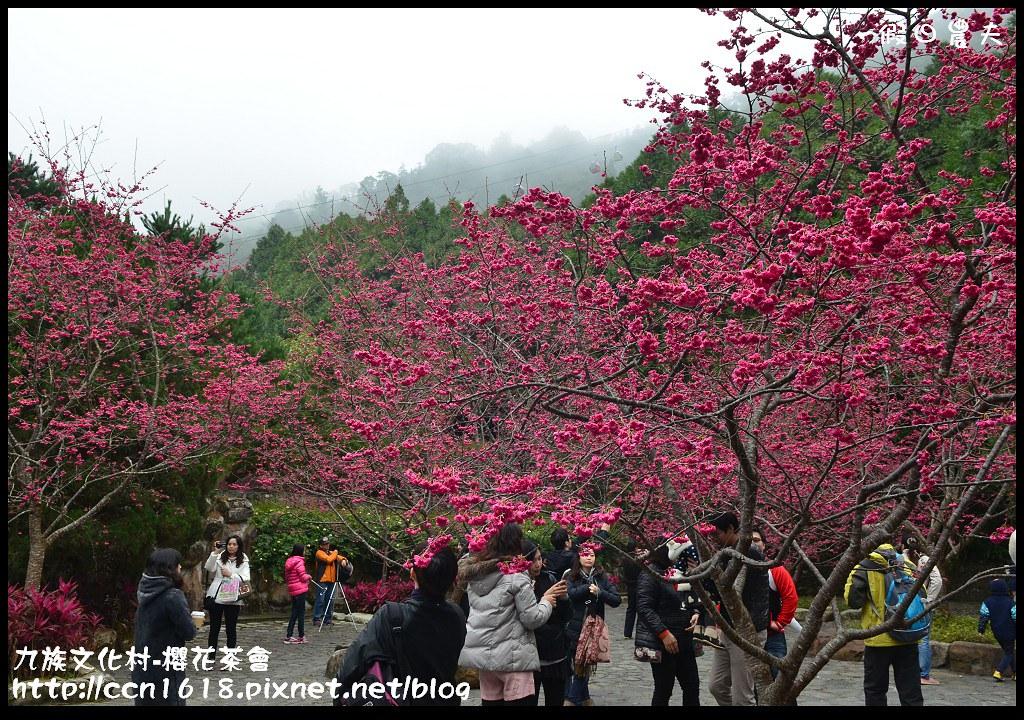 九族文化村-櫻花茶會DSC_4516