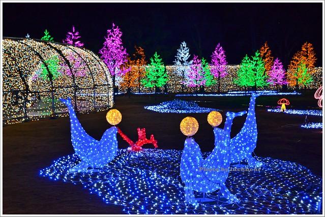 大阪城3D燈光秀2015005-DSC_3866