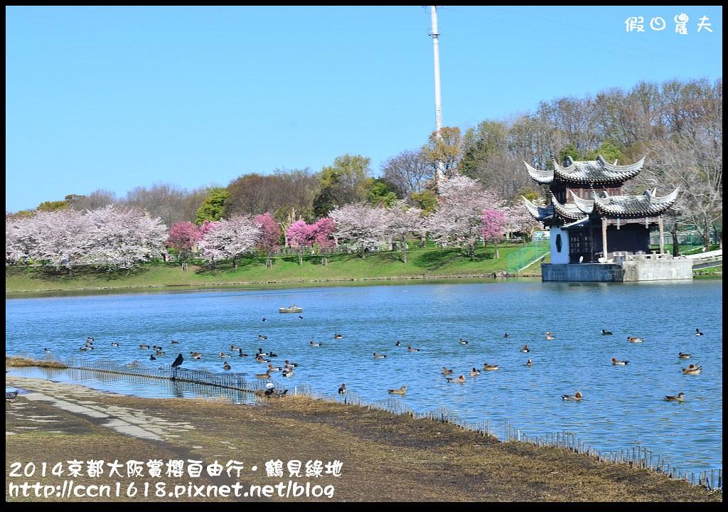 2014京都大阪賞櫻自由行.鶴見綠地DSC_1214
