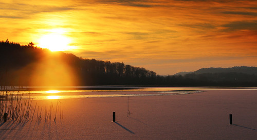 trees sky sun lake ice sol is sonnenuntergang træer himmel sø silkeborg søhøjlandet sonedgang