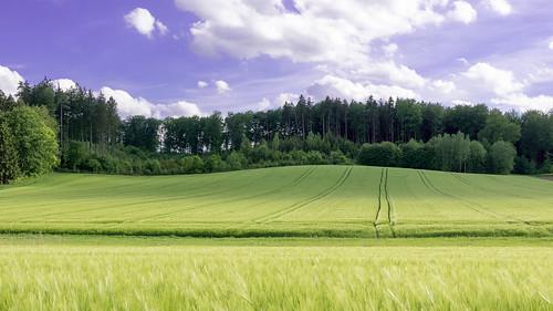 aichach bayern deutschland de lumix panasonic dmcg7 dmcg70 mft microfourthirds g7 g70 lumixg7 lumixg70 nophotoshop keineschmutzigentricks ohneschmutzigetricks nodirtytricks gvario14140f3556 outdoor landschaft landscape