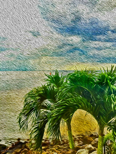 blue sunset cloud green art water clouds painting tampabay florida palmtrees imran apollobeach imrananwar