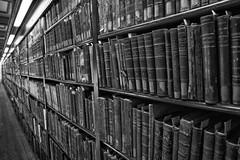 Jordi Palomeras fotografia la Biblioteca de Lletres