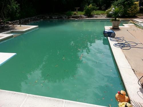 pool mudded out after 10 rain. Black Bedroom Furniture Sets. Home Design Ideas