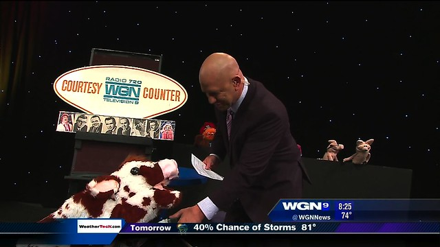 Erica as Bessie on WGN Morning News
