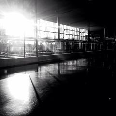 À l'aéroport Trudeau - Photo of Poullignac