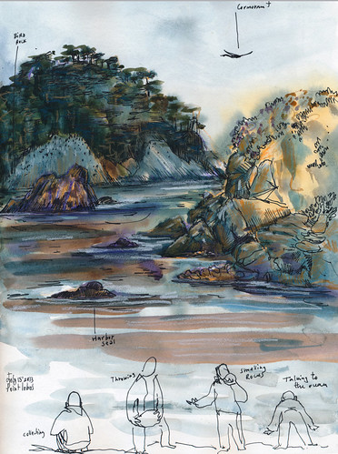 July 2013: Point Lobos by apple-pine