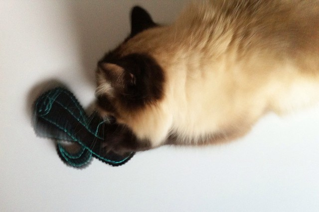 Cobra Catnip Toy