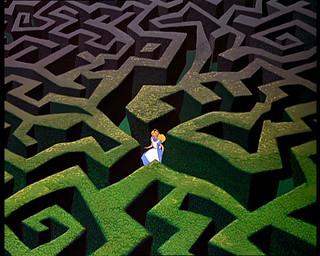 labyrinth, scavenger hunt