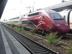 train station, bullet train, metropolitan area, tgv, high-speed rail, vehicle, train, transport, rail transport, public transport, locomotive, passenger car, rolling stock, track, land vehicle, railroad car,