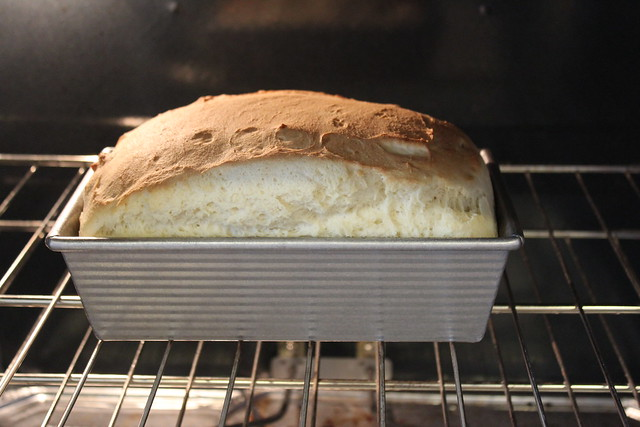 Gluten Free Bread Rising & Browning
