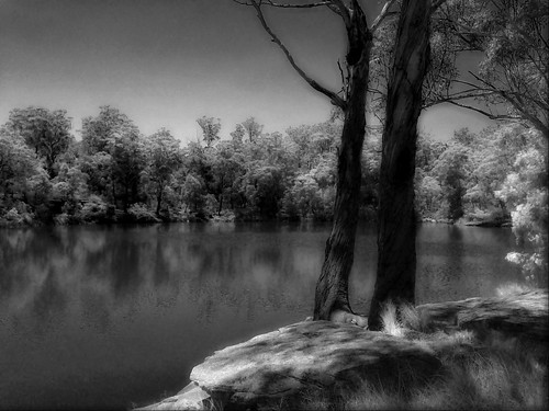 bw lake water river landscape infrared iphone parramatta parramattalake aremac denisemcdonald