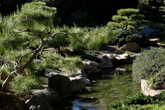 The Japanese Friendship Garden Of Phoenix Arizona Ro Ho En Flickr Photo Sharing