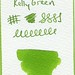 Small photo of Diamine Kelly Green Ink Swatch