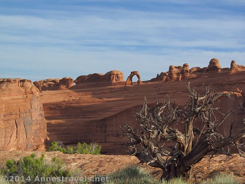 View along the slickrock near the Upper Delicate Arch Viewpoint, Arches National Park, Utah