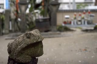 One scene in Kanon-ji Temple(Toyokawainari Osaka Betsuin),No.1.