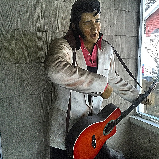 #Elvis lives in the burbs of #detroit!