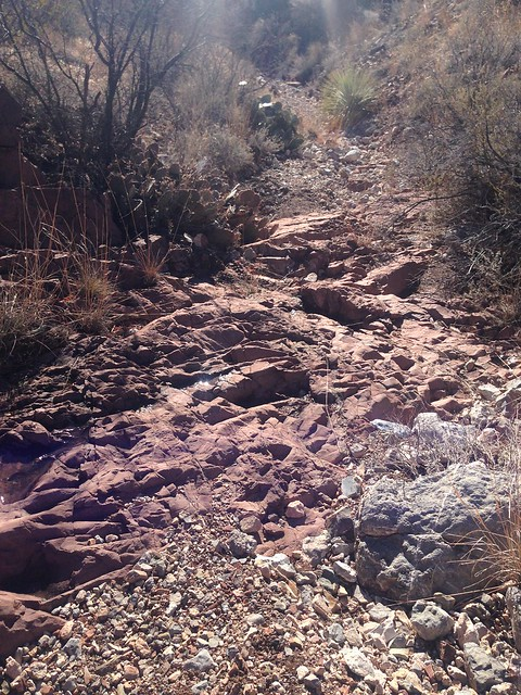 11 mile run today. I found the arroyo that connects sidewinder to mescal canyon. It is Utah beautiful.