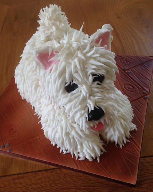 Monty by Nanny's Novelty Cakes