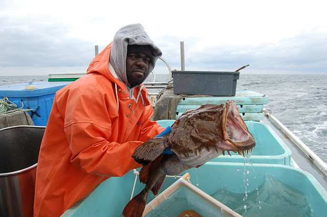 NEFSC researcher Larry Alade holds a tagged monkfish