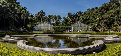 Jardim Botânico de São Paulo by kassá