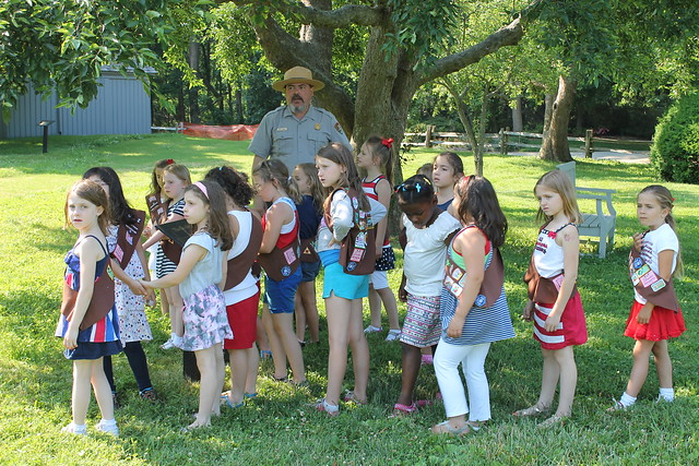 gsnc girl scout brownies   wave the flag program   girl