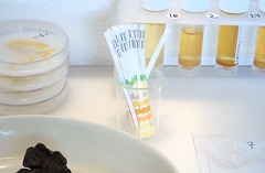 Amanda Cotton - Urinalysis Test Strips