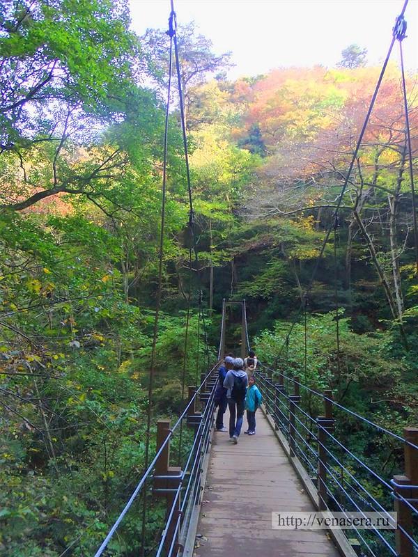 Гора Такао - Мост