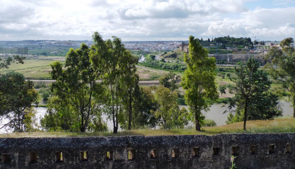 11. Badajoz y el río Guadiana desde el fuerte de San Cristóbal. Autor, Lord Wellington1815