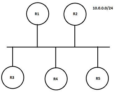 OSPF-DR-1