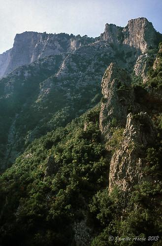 travel trees film rock 35mm rocks europe hiking 1988 slide greece quartzite scannedslide mtolympus pieria makedoniathraki