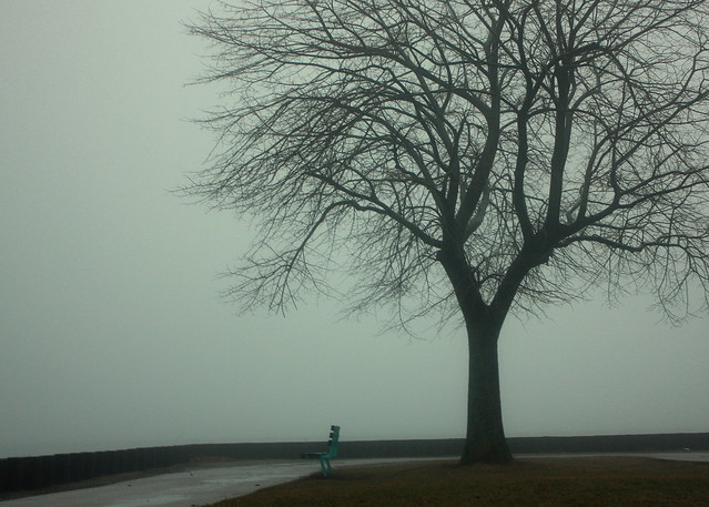 12.4.13 Lake Point Fog 4