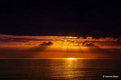Sunrays over the sea
