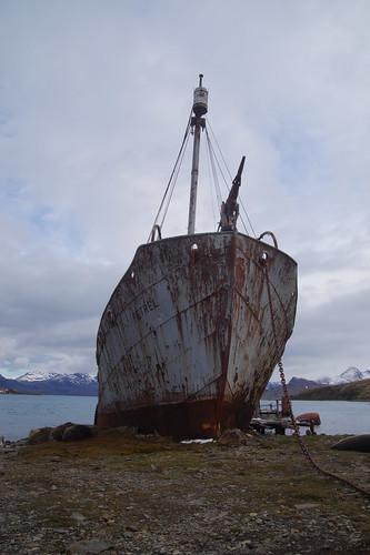 451 Grytviken