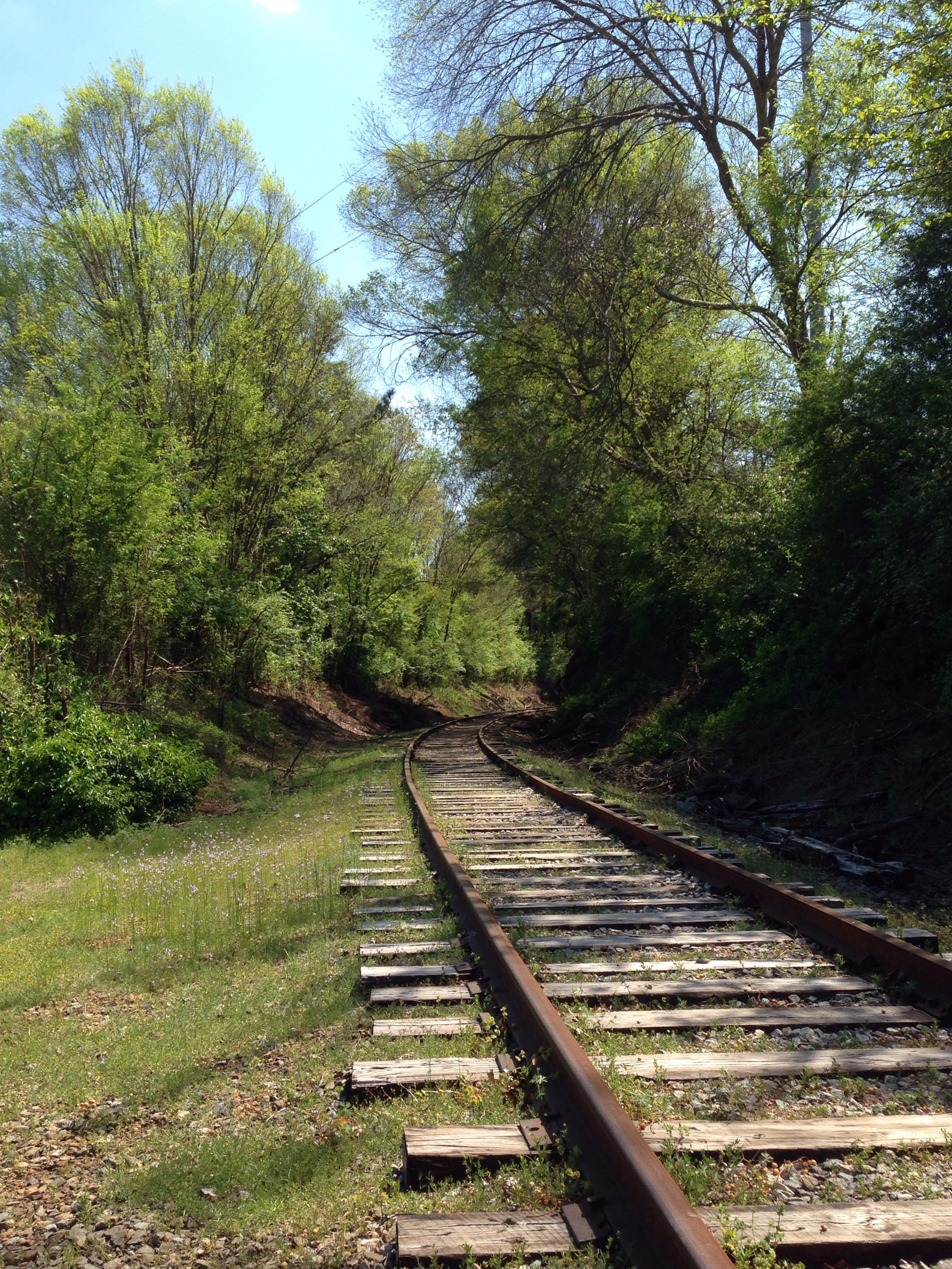 The train tracks on East Campus Road