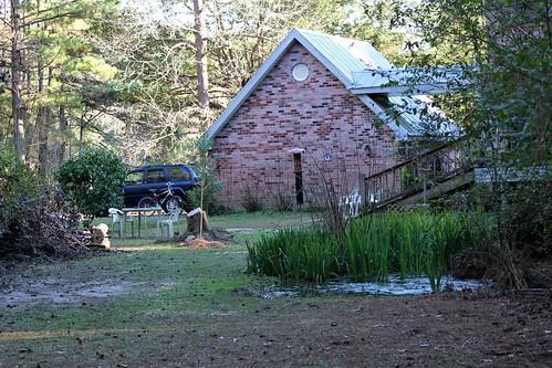 CrabAppleLane Backyard - January 25, 2015