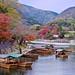 Classic Arashiyama Autumn
