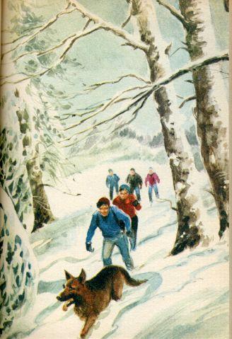 Les Six compagnons et les skieurs de fond, by Paul-Jacques BONZON