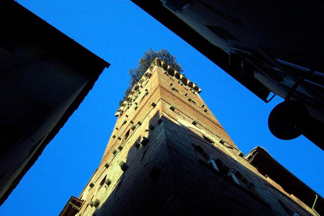 Torre Guinigui . © Paco Bellido, 2003