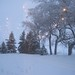 blizzard 2/1/2015 by rosewelchans