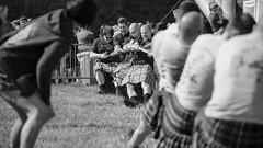 Gentle Giants Snellegem Highland Games