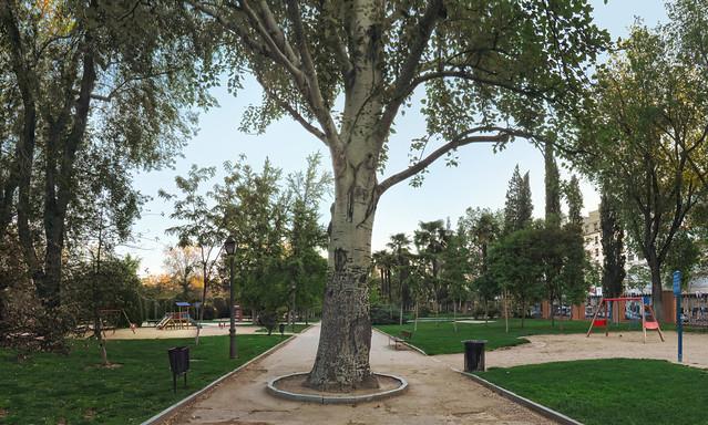 angel caido, parque retiro, madrid (2016)
