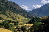 Nepal Trekkingtour Manaslu. Der Manaslu, 8163 m, über fruchtbaren Himalaja-Tälern. Foto: Archiv Härter.