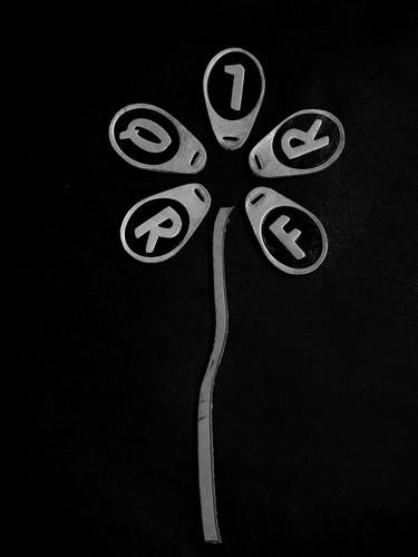 @efe9 worshoot flor cuero fondo liso