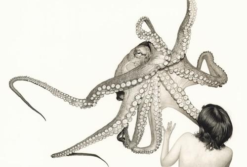 Fabien Merelle, Poulpe II (Octopus II), 2013jpg