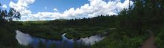 Gooseberry River Valley Pano