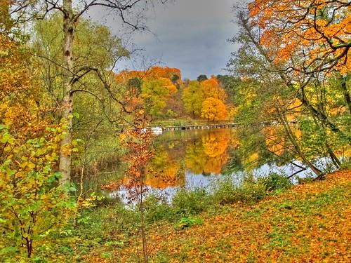 Autumn in Hagaparken, Stockholm, Sweden by sawelli
